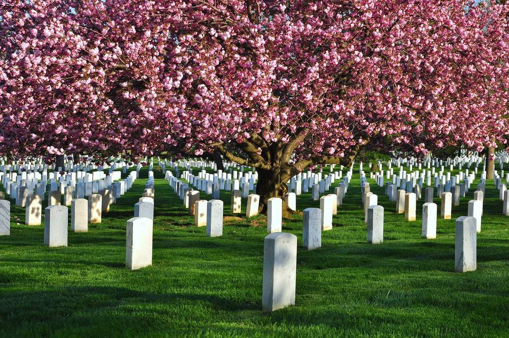 Nghĩa trang quốc gia Arlington, ở Virginia, Hoa Kỳ