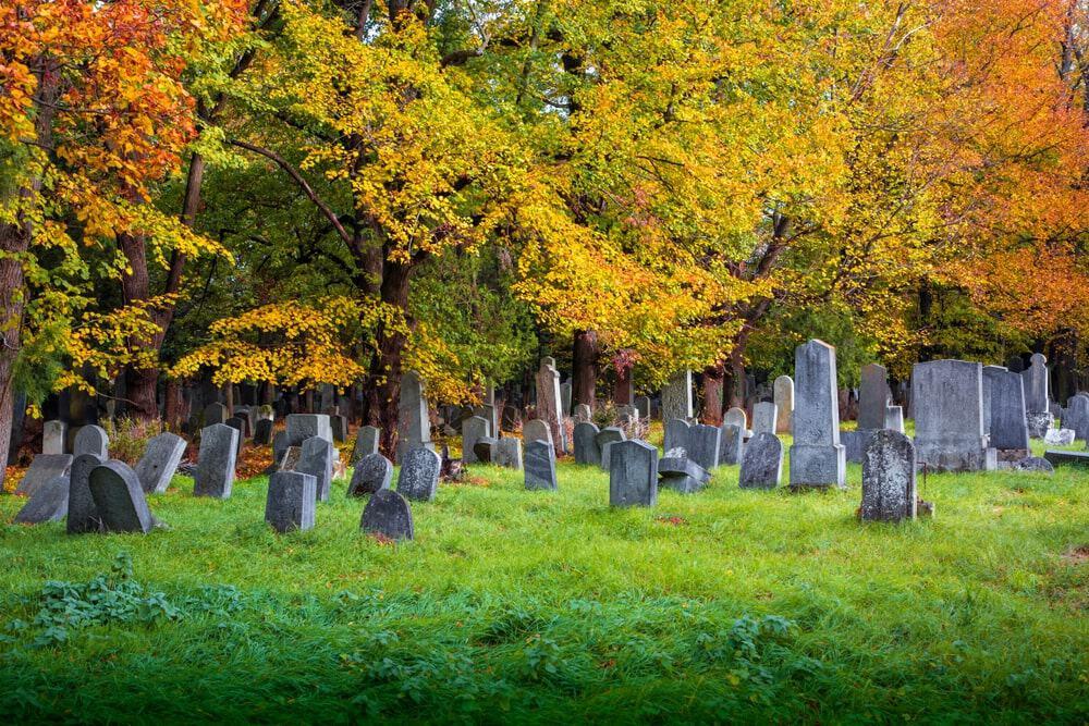 Lá cây đổ vàng vào mùa thu trong nghĩa trang Old Jewish